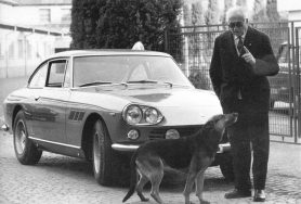 Enzo dog