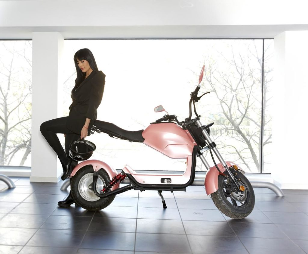 A female model poses with her foot on the wheel of a Sterling Eco bike.