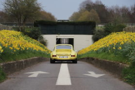 The yellow Porsche surrounded by yellow flowers